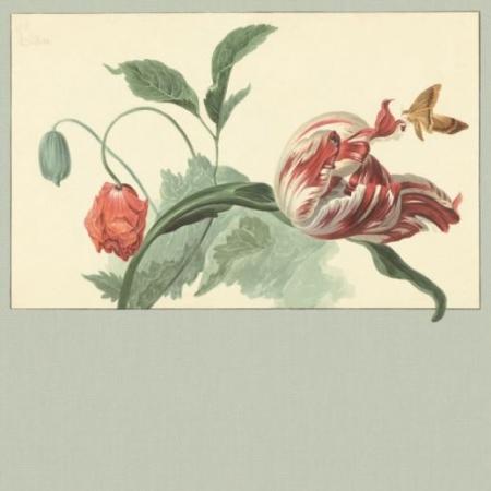 Panel Masterpiece 358119, Eijffinger