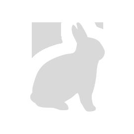 Stolička Elephant Stool, Vitra